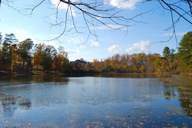 Fishing 1 | Meybohm Real Estate
