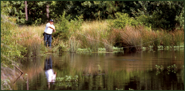 Fishing 2 | Meybohm Real Estate